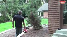 WARN PullzAll pulling down a tree